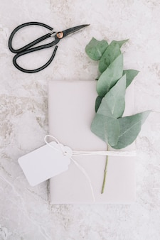 Scissor and blank tag tied on white package with twig on marble background