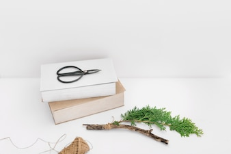 Scissor on two books with thuja twig and spool on white backdrop