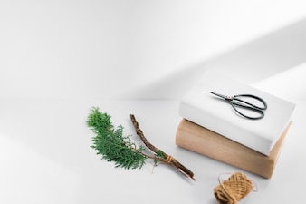 Scissor on two white and brown books with thuja twig and spool on white backdrop