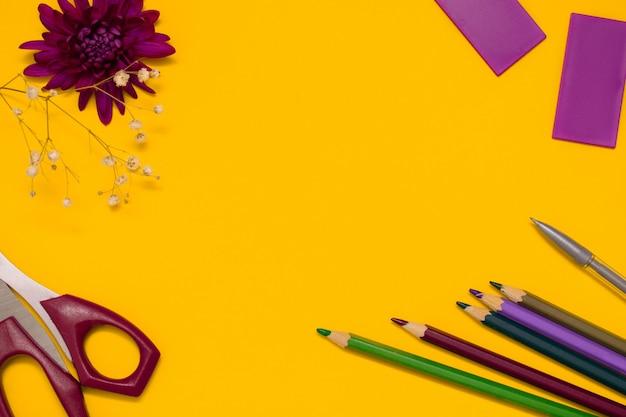 Ножницы, цветные карандаши и цветок хризантемы. обратно в школу концепции плоской планировки.