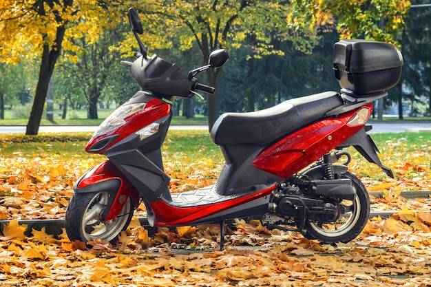 Scooter in autumn park