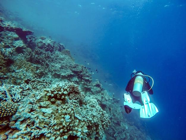 Scuba diver underwater close to coral reef, maldives.