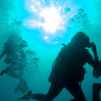 Scuba divers underwater, Utila, Bay Islands, Honduras
