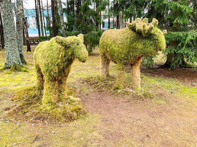 Sculptures of animals in forest from natural materials