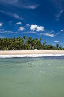 コピースペースと海とビーチの背景