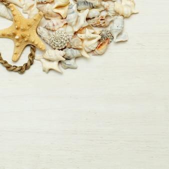 海と旅行のコンセプト-貝殻と海のヴィンテージの背景