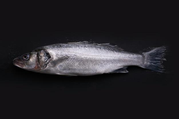 Sea bass fish over dark background, raw seafood