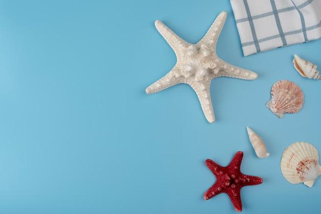 Море синий фон с ракушками. натуральные ракушки с копией пространства. основа для дизайна морского баннера, открытки.