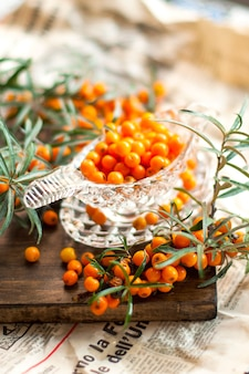 Sea buckthorn berries are fresh and a branch with leaves. vintage photo. vitamins and health.