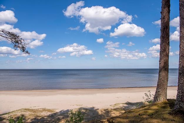 Морское побережье с облаками в солнечный летний день.