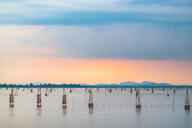 Sea fishing trap tool in the sea