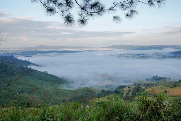 Sea of fog in khao kho at thailand