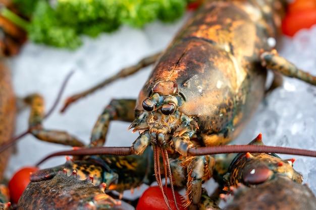 태국의 거리 시장에서 신선한 바다 가재. 해산물 개념입니다. 요리를 위한 생 랍스터, 클로즈업