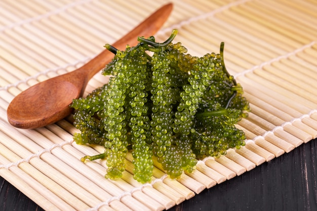 Sea grapes ( green caviar ) seaweed