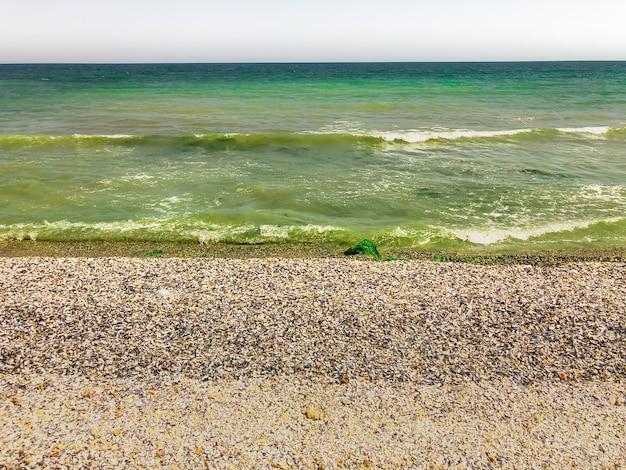 海の緑のアクアマリンの波が日当たりの良い貝殻のビーチに並んでいます。波の海の泡。自然な背景の空