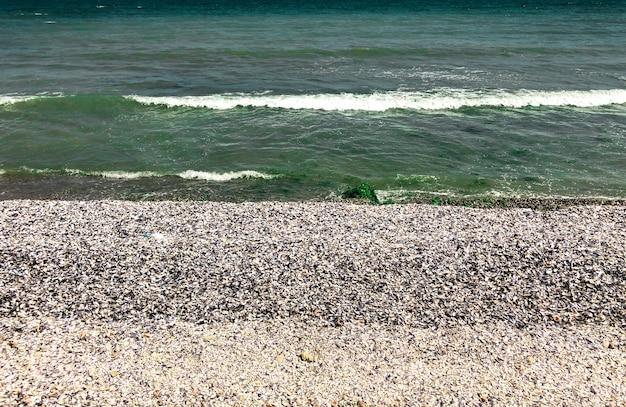 海の緑のアクアマリンの波が日当たりの良い貝殻のビーチに並んでいます。波の海の泡。