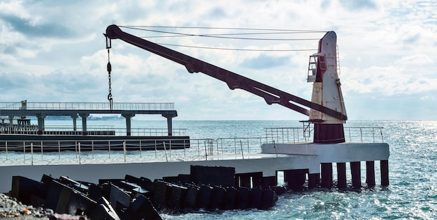 Sea loading crane
