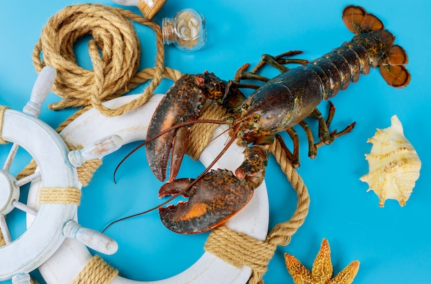 Sea lobster on rescue circle with shell on blue surface