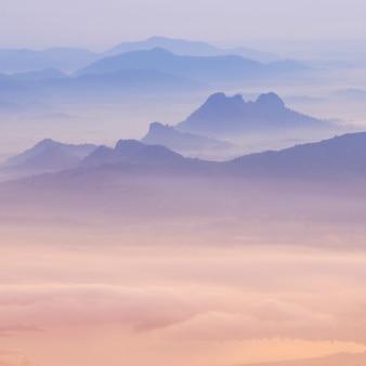 Sea of mist and sunrise background.
