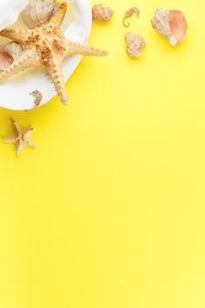 모래 배경 같은 노란색에 바다 연체 동물