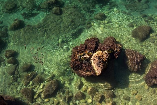 Sea of ortigia