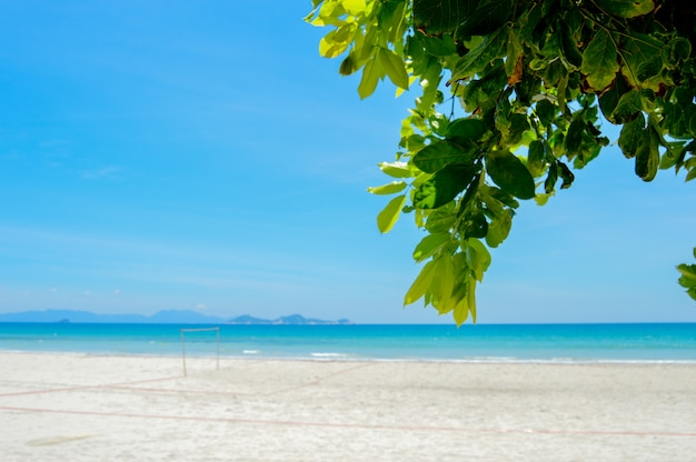 Sea resort wild beach