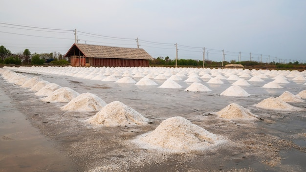 Sea salt fields local farm, salt-pond