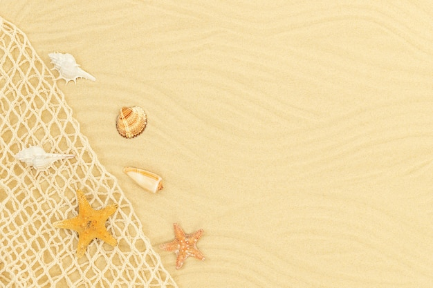 Sea sandy background with sea netting seashells and starfishes