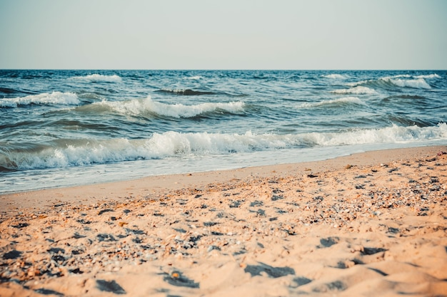 The sea and the sandy beach, with white tops of waves lapping on the shore, the filter