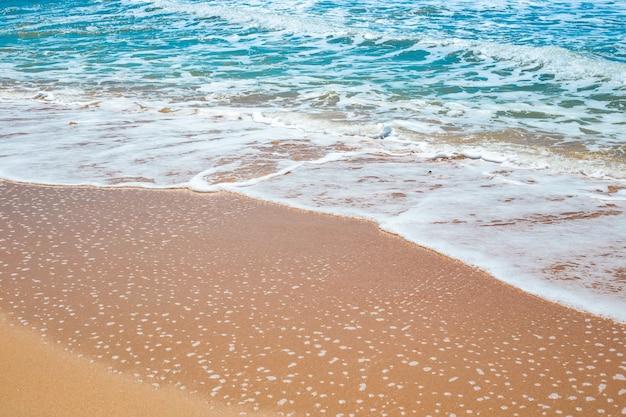 Морской песчаный берег с набегающей пенной волной. путешествия и туризм. естественный летний фон.