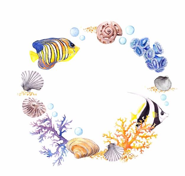 海の貝、サンゴ、砂。夏のビーチの花輪の境界線。