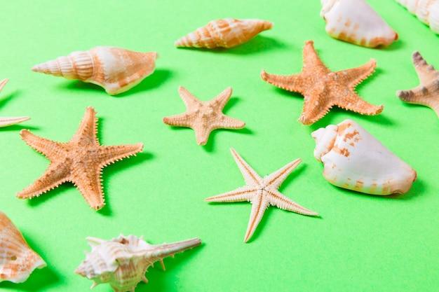 녹색 배경 및 모래에 바다 포탄과 불가사리. 휴가 시간 개념.