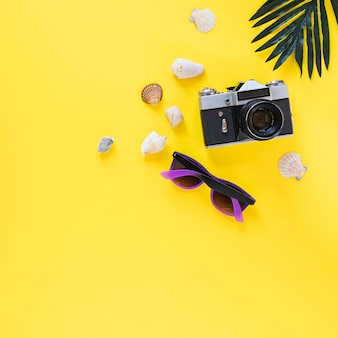 Sea shells; camera; sunglasses and palm leaf on yellow background