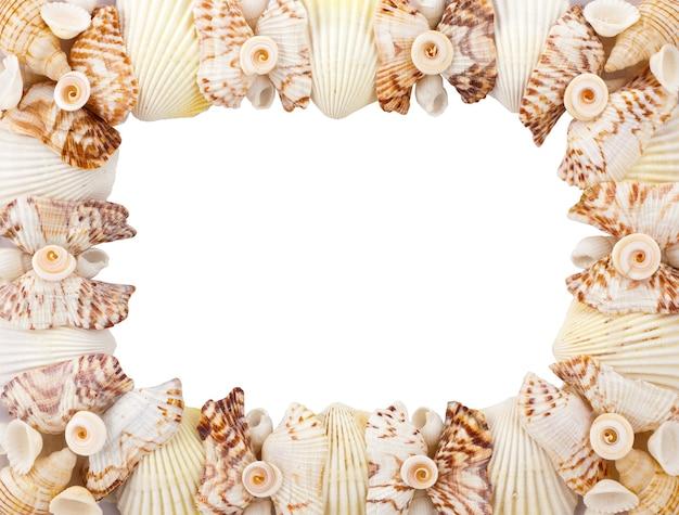 Sea shells frame isolated on white background