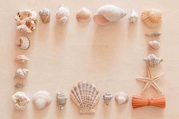 Sea shells frame on wooden background