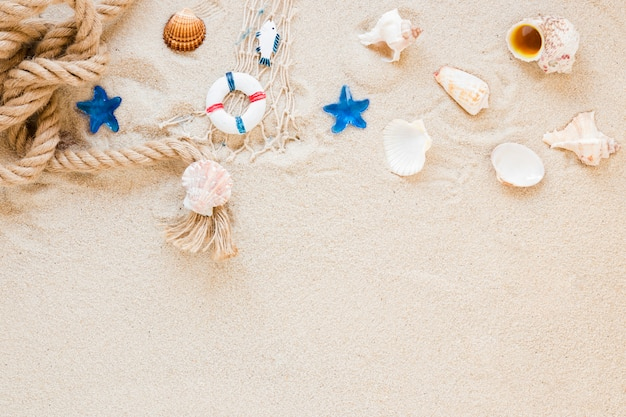 Sea shells with nautical rope on sand
