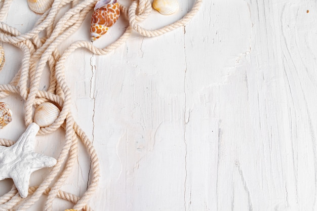 Sea shells with rope on white wood, copy space. vacation concept
