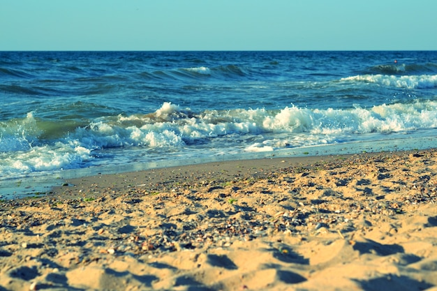 Sea shore on a sunny day with filter