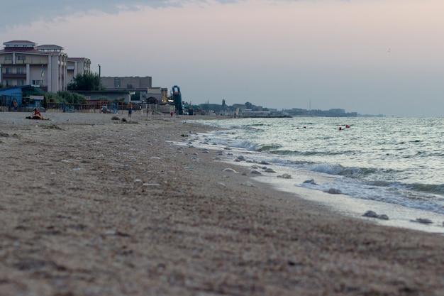 Морской берег с медузами рано утром