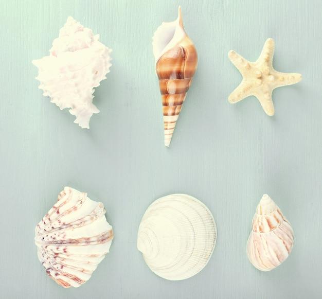 바다 기념품 컬렉션, 평면도