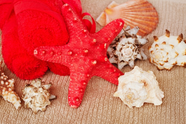 Sea spa treatment setting with red star fish and sea shells