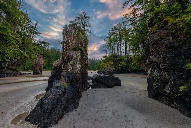 케이프 스콧, 주립 공원, 밴쿠버 아일랜드, 브리티시 컬럼비아, 캐나다의 산호세 프 베이에서 바다 스택.