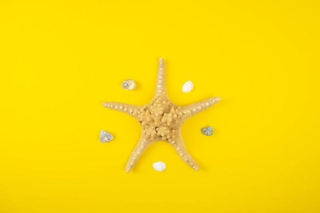 Морская звезда и ракушки на желтом фоне