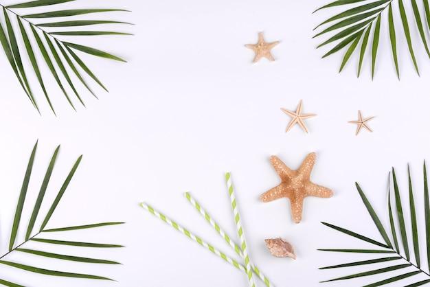 흰색 바탕에 바다 별입니다. 여름 배경