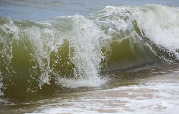海岸線での海の波の大きな波の休憩