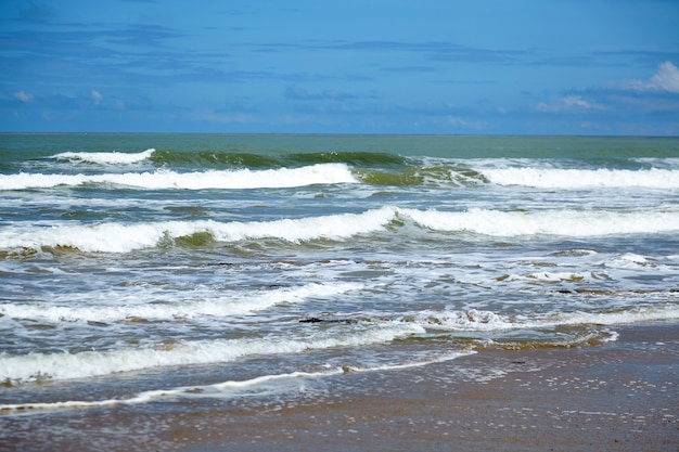 海の水、波、ビーチの濡れた砂