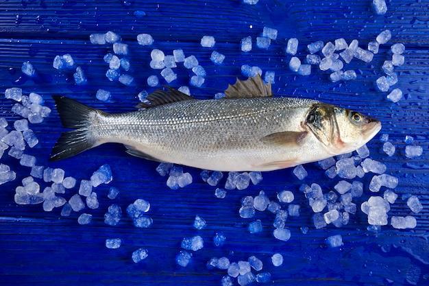 Seabass fresh fish on ice and wood