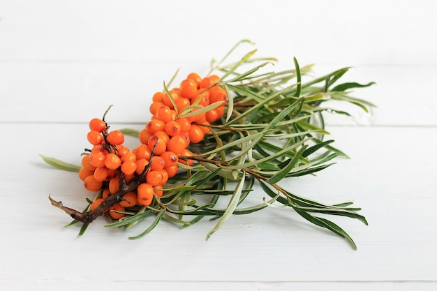 Seabuckthorn berries branch on wooden background