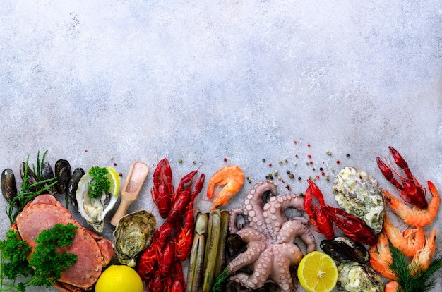 Seafood background on grey background