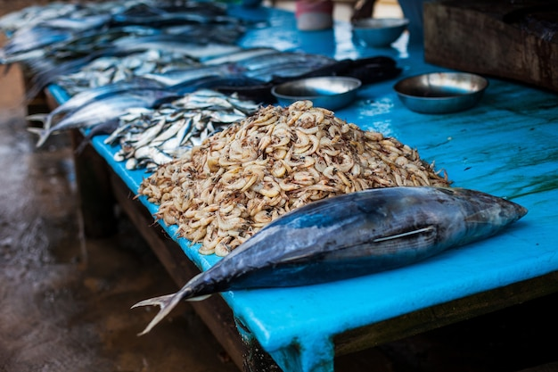Seafood at the fish market.
